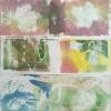 herbarium-fontein-01