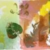 herbarium-fontein-06